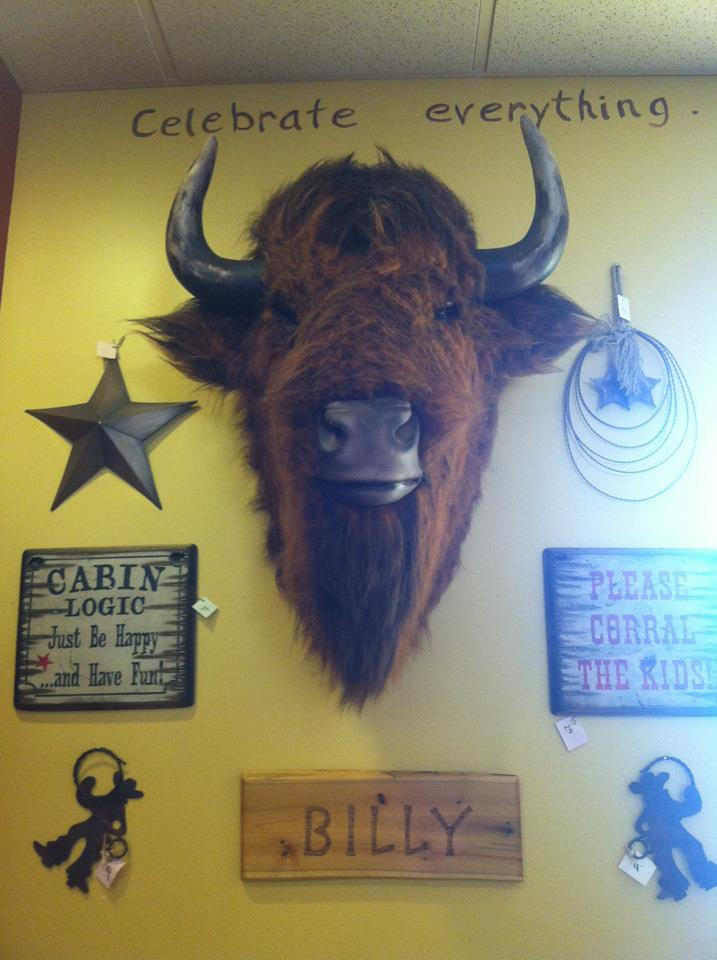 Say hello to Billy the bison.